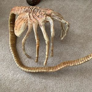 Bendable replica alien facehugger
